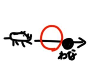 イノシシ3